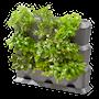natureup-grundpaket-vertikala-vxthllare-3