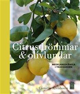 citrusdrmmar-olivlundar-medelhavsknsla-i-trdg-1