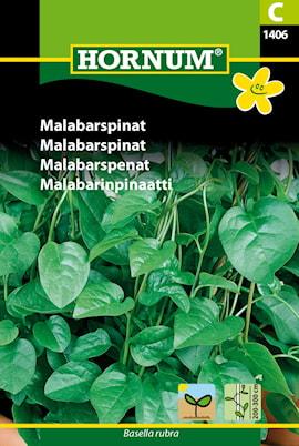 malabarspenat-1