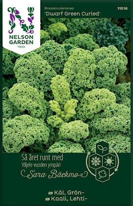 grnkl-dwarf-green-curled-1