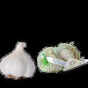 sttlk-vitlk-germidour-2st-1