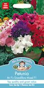 petunia-mr-fs-grandiflora-mixed-f1-1