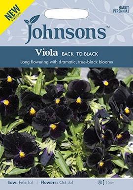 viol-back-to-black-1