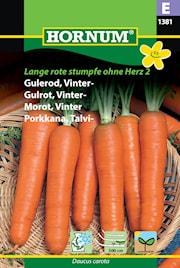 morot-vinter--sband-herz-2-1
