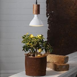 vxtlampa-odla-plant-light-led-underhllsbelysn-1