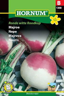 majrova-ronde-witte-roodkop-1