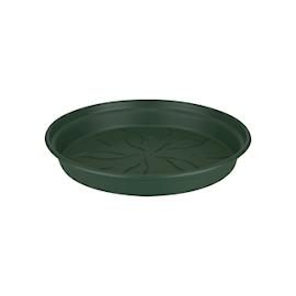 green-basics-saucer-dia-22-cm-leaf-green-1