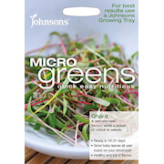 microgreens-mangold-chard-bright-lights-1