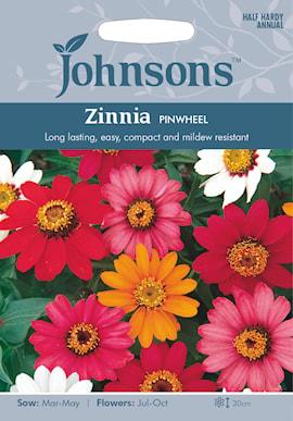 zinnia-pinwheel-1