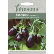 aubergine-pot-black-f1-1