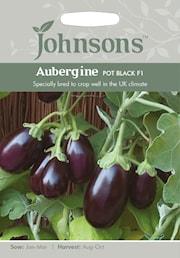 aubergine-pot-black-f1-1