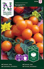 tomat-krsbrs--sungold-f1-1