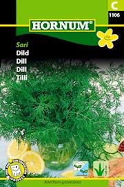 dill-sari-1