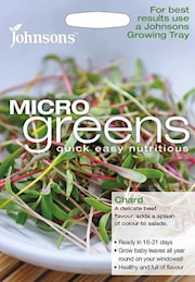 microgreens-mangold-chard-bright-lights-1