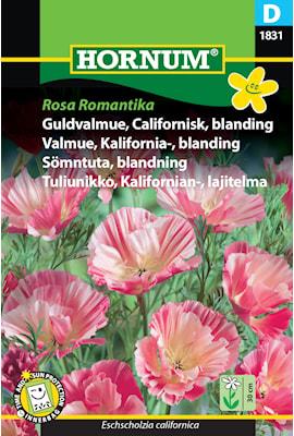 smntuta-rosa-romantika-1