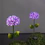 solcellsdekoration-hortensia-rosa-1