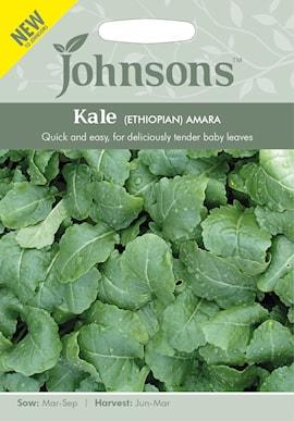etiopisk-kl-amara-1