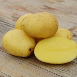 potatis---pocahontas-1kg-1