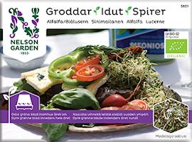 groddar-alfalfa-1