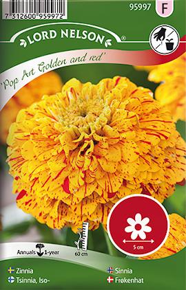 zinnia-pop-art-gold-red-1