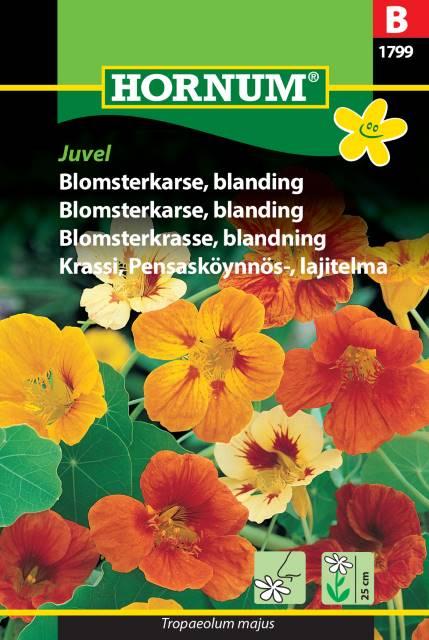 Blomsterkrasse, blandning Juvel