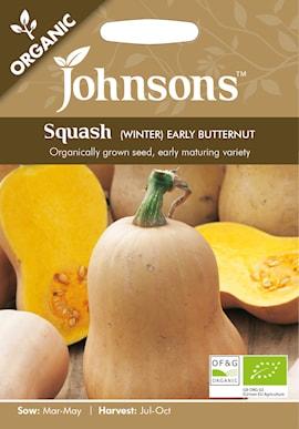 squash-winter-early-butternut-organic-1