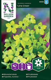 blomstertobak-lime-green-1