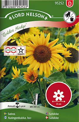 solros-golden-hedge-halvhg-1