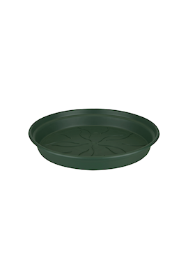 green-basics-saucer-dia-10-cm-leaf-green-1