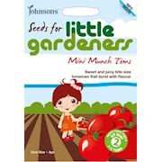 tomat-mini-munch-little-gardeners-1