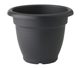 green-basics-campana-dia-40-cm-living-black-1