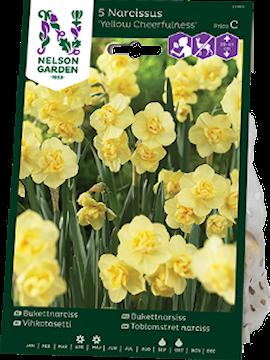 bukettnarciss-yellow-cheerfulness-5st-1