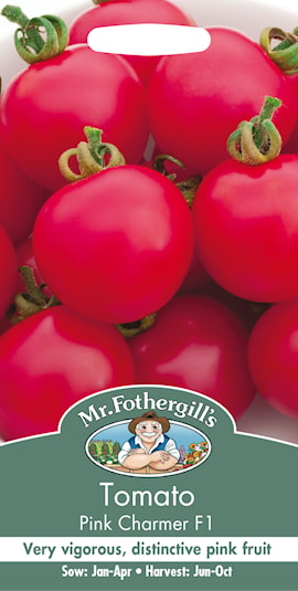 tomat-pink-charmer-f1-1