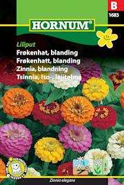 zinnia-mix-liliput-1