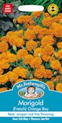 sammetstagetes-orange-boy-1