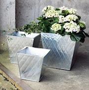 zinkkruka-fyrkantig-20cm-silver-liten-1