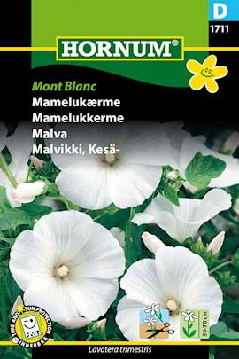 malva-mont-blanc-1