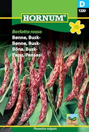 bna-busk--borlotto-rosso-1