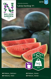 melon-vatten--little-darling-f1-1