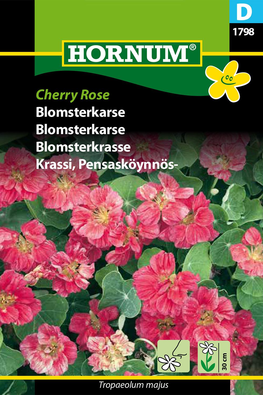 Blomsterkrasse 'Cherry Rose