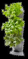 nature-up-grundpaket-vertikala-vxthllare-fr-h-1