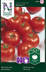 tomat-shirley-f1-fr-1