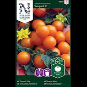 tomat-krsb--sungold-f1-1