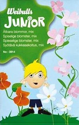 junior-tbara-blommor-1