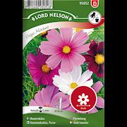 rosenskra-vega-mixture-1