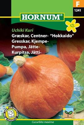 pumpa-jtte--uchiki-kuri-1
