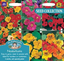 indiankrasse-collection---6-sorter-1