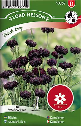 blklint-black-boy-1