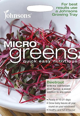 microgreens-rdbeta-bulls-blood-1