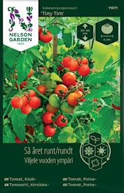 tomat-kruk--tiny-tim-1